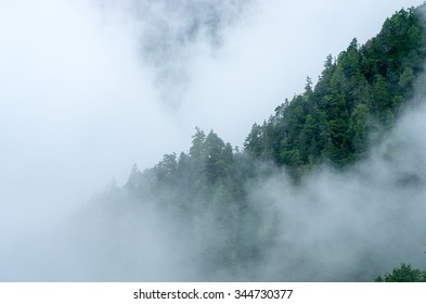 mountain fog