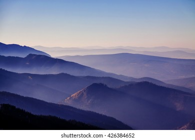 Mountain foggy horizon landscape with tree forest in Zakopane