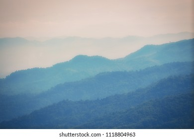 Mountain forest in clouds landscape. Foggy forest.