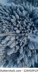 Mountain Forest covered with snow. Aerial Winter Landscape. Winter is here. Spruce forest in winter. Frozen forest from above