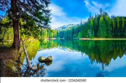 Mountain forest lake landscape. Mountain lake forest. Mountain lake reflection. Mountain lake forest view