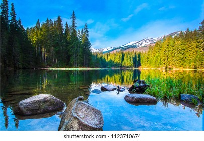 Mountain forest lake stones landscape. Forest lake in mountains. Mountain forrest lake water panorama