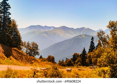 Mountain forest landscape at the foot of the Caucasus Mountains, Adygea, Russia