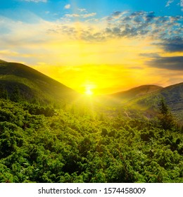 Mountain forest landscape under evening sky with clouds in sunlight.