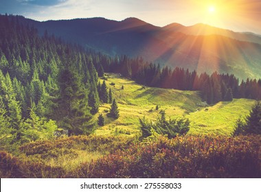 Mountain forest landscape under evening sky with clouds in sunlight. Filtered image: Soft and vintage effect.
