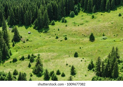 mountain forest and meadow summer landscape, view from above