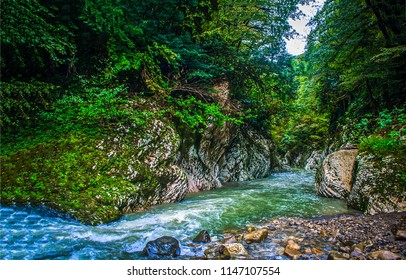 Mountain forest river canyon landscape. Wild river in mountain canyon scene. Mountain wild river view