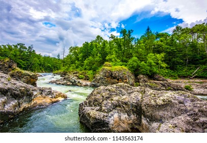 Mountain forest river landscape. Forest river in mountains. Mountain forest river view