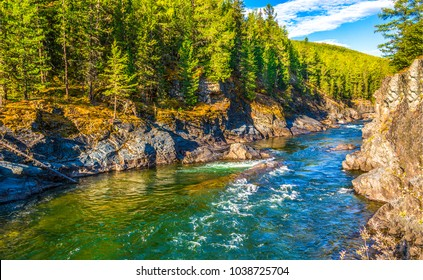 Mountain forest river natural landscape view