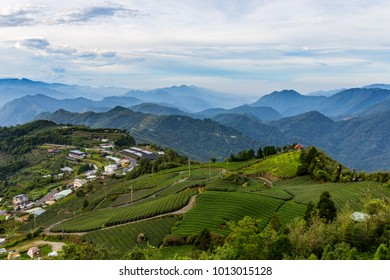 Mountain forests and tea plantations in Taiwan