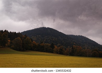Mountain with forrest before a field in Oberammergau, Germany