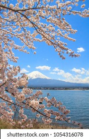 Mountain Fuji and Cherry Blossom in Japan Spring Season, Sakura season time