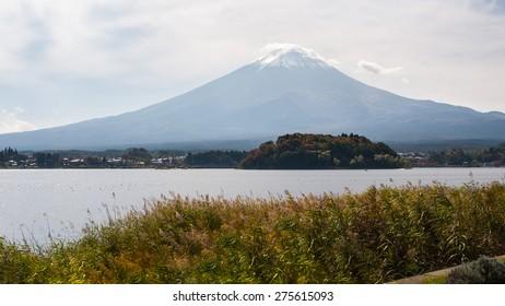 Mountain Fuji with flowers view of kawakuchiko lake, Japan.