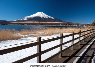Mountain Fuji with Grass Flowers Blowing