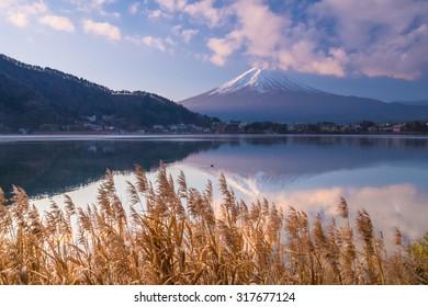 Mountain Fuji in the morning
