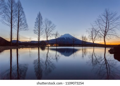 Mountain Fuji in the morning at Fumotopara camping ground, Fujinomiya , Shizuoka prefecture