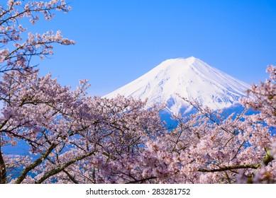 Mountain Fuji on Sunny Spring Day