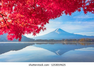 Mountain Fuji with reflections and beautiful leaves of maple at lake kuwaguchiko Japan.