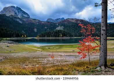 "Mountain glacial lake in autumn, National park ""Black Lake, Durmitor"", Montenegro"