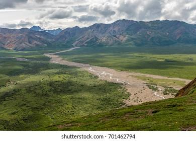 A mountain glacial stream creates a muddy flat in Denali National Park, Alaska.