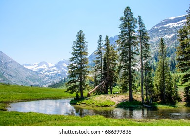 Mountain with Glacier in the summer at California, at Kennedy Meadow