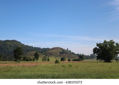 Mountain grass Ranong green color with blue sky background