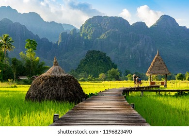 Mountain and green rice field in Vang Vieng, Oct 2018 , LAOS