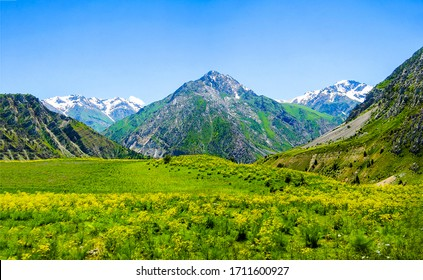 Mountain green valley landscape. Green mountain valley landscape. Mountain valley scene. Mountain valley landscape