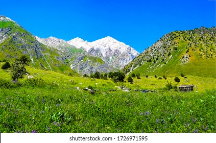 Mountain green valley peak snow. Green mountain valley snow peak background. Mountain peak snow landscape