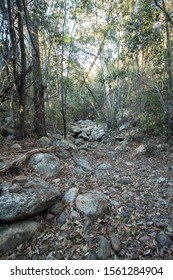 Mountain Gully in dry times at Mount Walsh in Queensland, Australia.