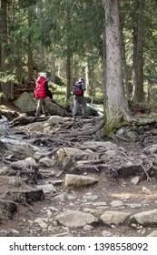 Mountain hiking concept. hikers walking on a mountain trail. Hiking trail in High Tatras Slovakia, Europe.