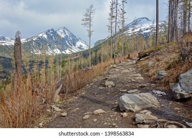 Mountain hiking concept. Hiking trail in High Tatras Slovakia, Europe.