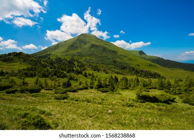 Mountain hills, Carpathian mountains landscape in summer