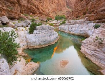 Mountain lake. The beautiful mountain scenery. Wadi Bani Khalid. Oman.
