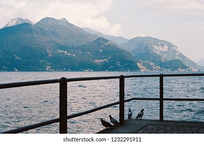 Mountain and lake Como, Italy overlooked by pidgeons