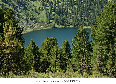 Mountain lake Karacol, Altai, Russia, forest landscape, wild nature