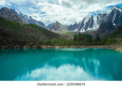 Mountain lake on front of giant beautiful glacier. Amazing mountain in shape of pyramid. Snowy ridge under cloudy sky. Wonderful atmospheric landscape of majestic nature. Coniferous trees in highlands