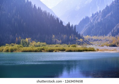 Mountain Lake with plants and trees in USA. California