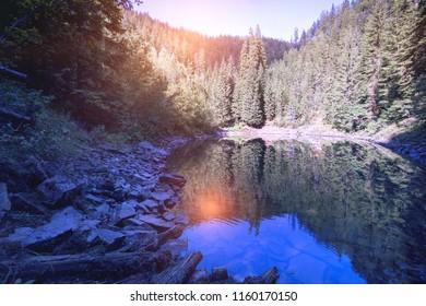 mountain lake Rosohan of the Carpathians, Ukraine
