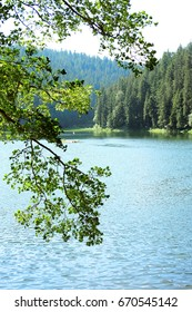 Mountain lake Synevyr in Western Ukraine in the Carpathian mountains. One of natural wonders of Ukraine.