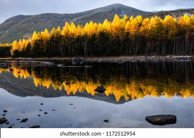Mountain lake with yellow forest, Russia, Siberia, Froliha near lake Baikal