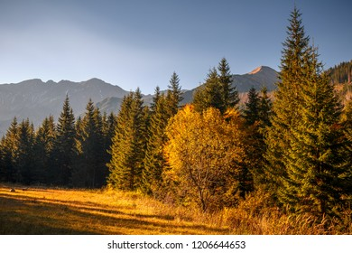 Mountain landscape at autumn, the area of Rohace in Tatras National Park, Slovakia, Europe.