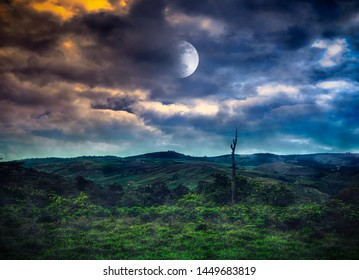 Mountain landscape covered with green tree forest. Night sky with full moon behind partial cloudy above mountain range. Serenity background. The moon were NOT furnished by NASA.