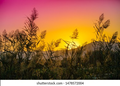 Mountain landscape in the evening. Beautiful lake against mountains. The Hula Valley in northern Israel at sunset