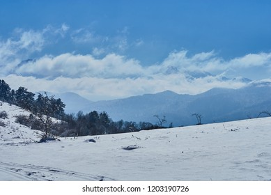 Mountain landscape. In the foreground there is a glade, behind the snowy peaks of the mountains. Beautiful blue sky. Lago-Naki, The Main Caucasian Ridge, Russia