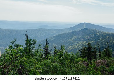 Mountain landscape with forest in cloudy summer day