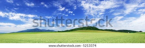 Mountain landscape - green filed, the blue sky and white clouds