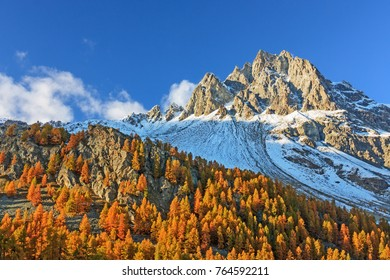 Mountain landscape with larches in autumn foliage in the Swiss Alps. Piz Lagrev in the Engadine, Grisons, Switzerland. With copy space.