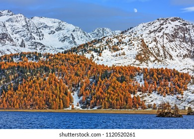 Mountain landscape with mountains at the shore of Lake Sils (Silsersee) in the Swiss Alps.Engadine valley, Grisons, Switzerland.