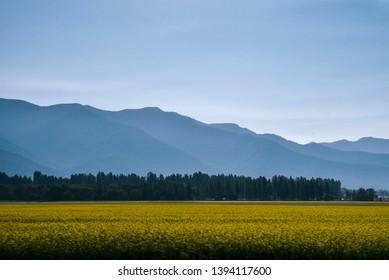Mountain Landscape Near Missoula, Montana